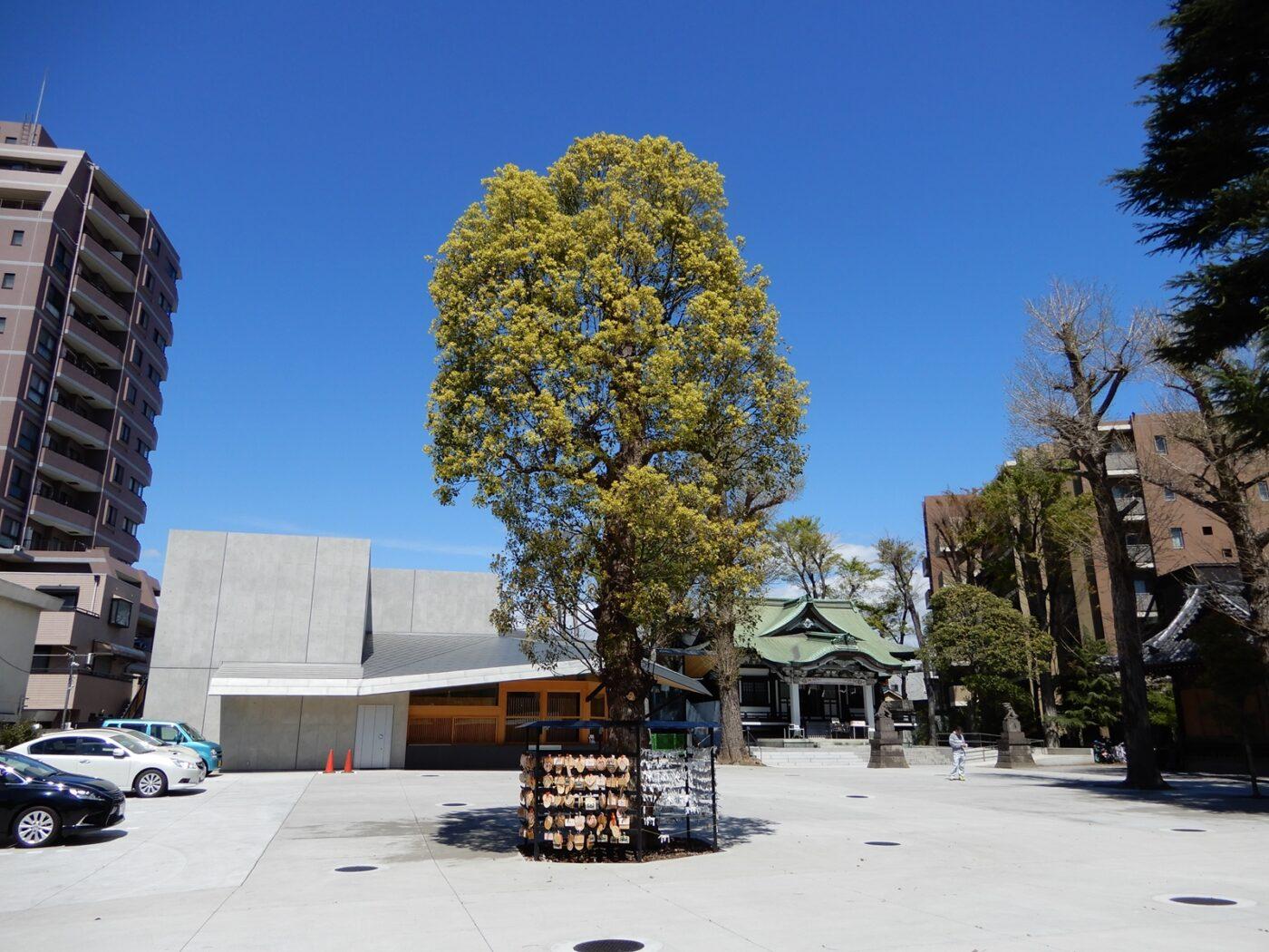 亀有香取神社の写真
