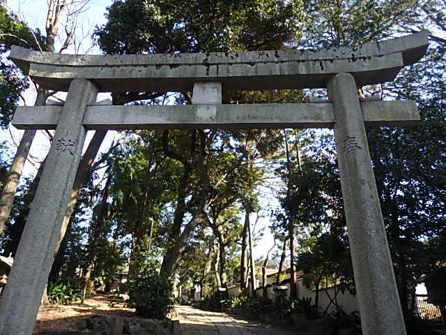 代々木八幡宮の写真