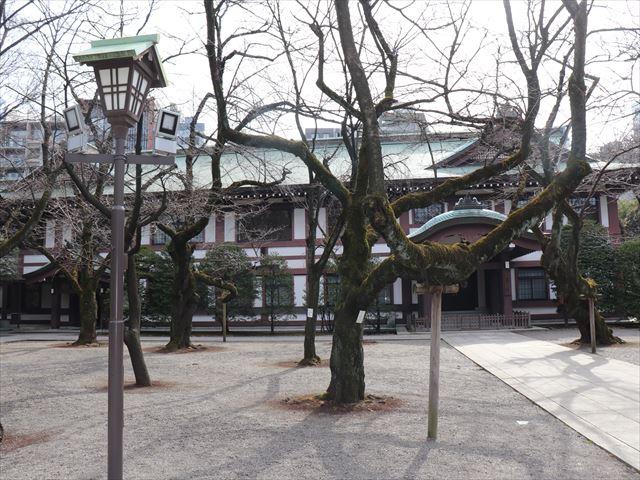 靖國神社(靖国神社)の写真