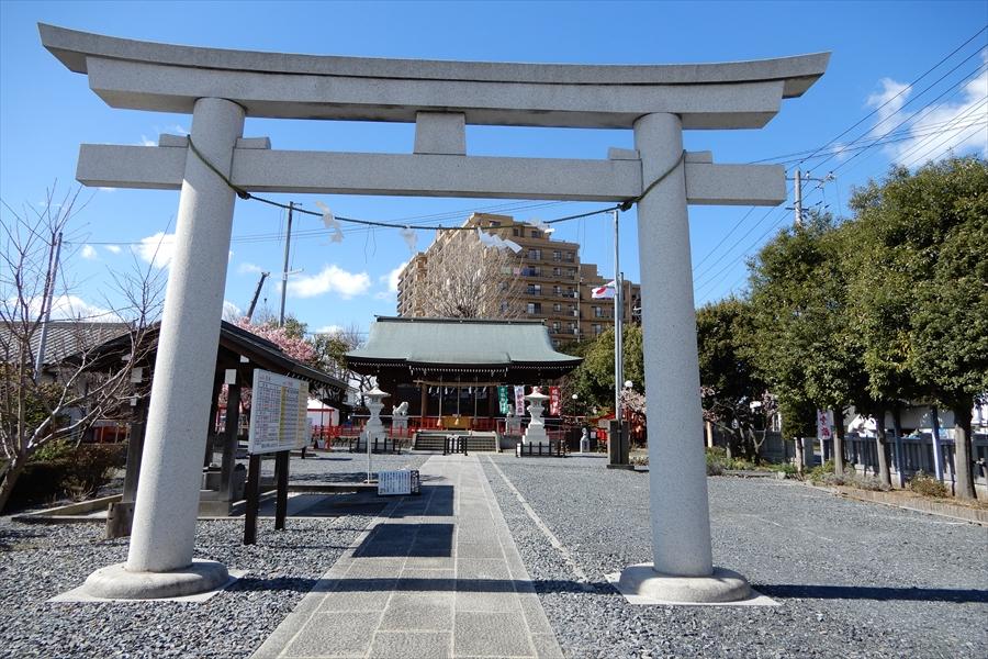 朝日氷川神社の写真