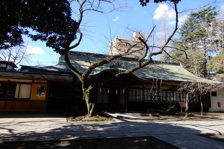 川口神社の写真