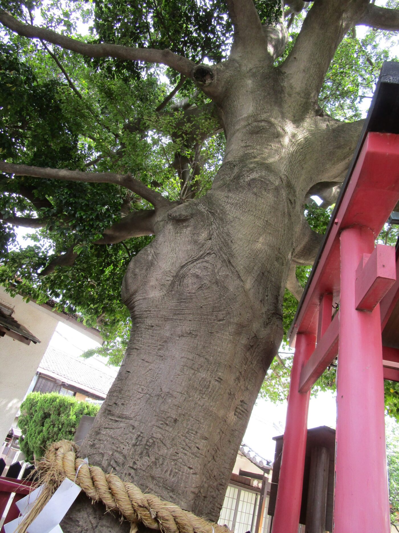 大宮神社 (大阪市旭区)の写真