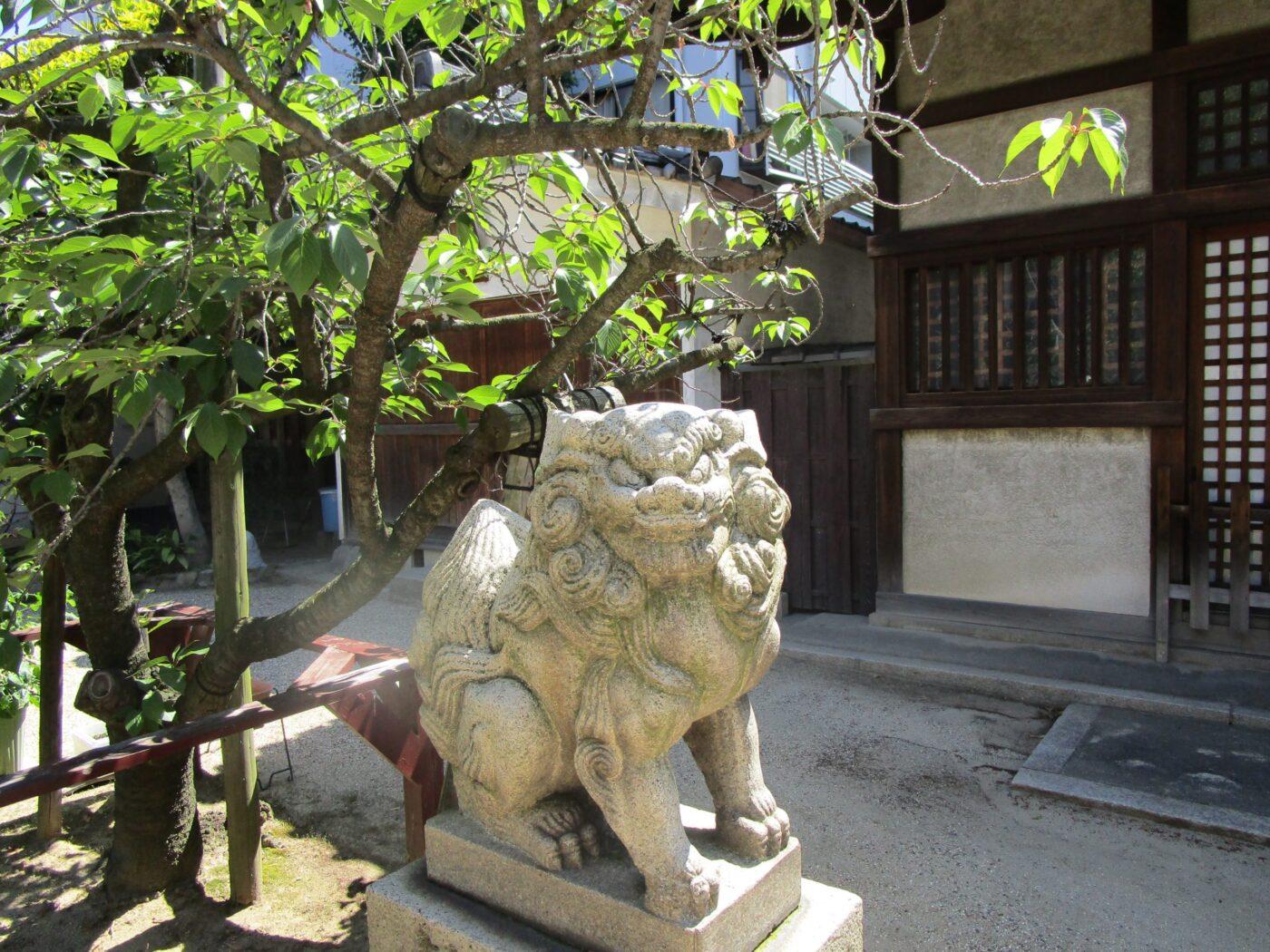 四貫島住吉神社の写真