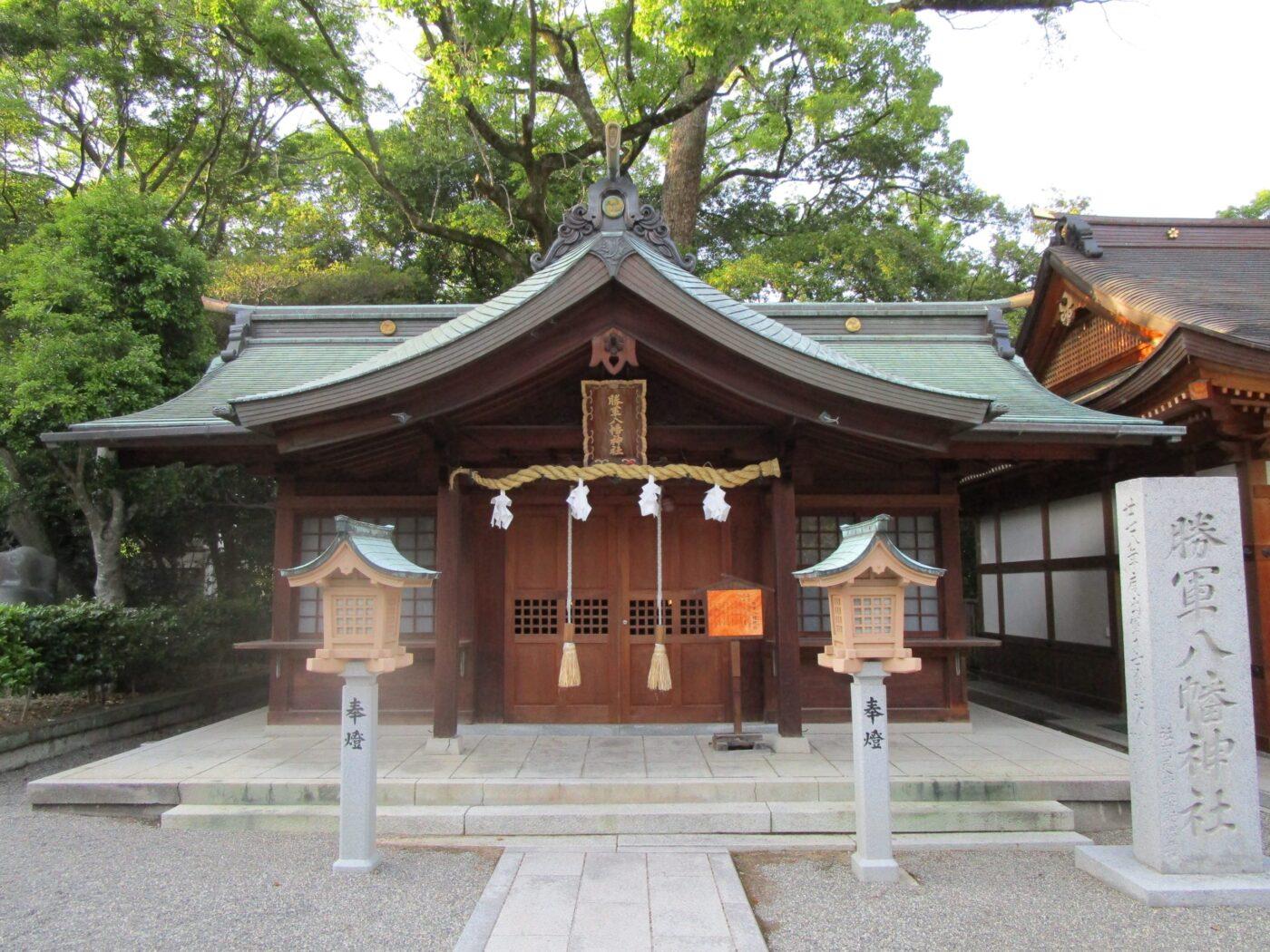 伊豫豆比古命神社-椿神社-の写真
